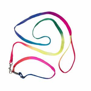 Berefijn - Teddy Mountain - Lier - accessoire - leiband - hondenketting - hondenhalsband - berenhalsband - berenketting