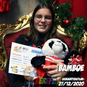 Bamboo – build a bear - teddybeer - Teddy Mountain - Lier - pandabeer - cheerleader - strikjes - pompons
