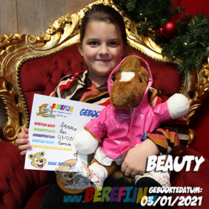 Berefijn knuffeldier Chess – teddybeer - Teddy Mountain - paard - Lier - regenjas - pink - ballerina - sneeuwprinses