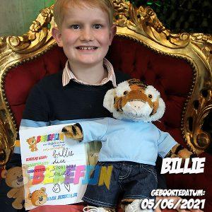 Berefijn knuffeldier Bennie – build a bear - teddybeer - Teddy Mountain - tijger - Lier - hoodie - Teddybear - Zelf knuffel maken