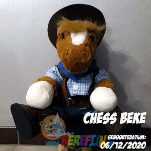 Berefijn knuffeldier Chess – teddybeer - Teddy Mountain - paard - Lier - cowboy - cowboyhoed - cowboylaarzen - boots - hemd