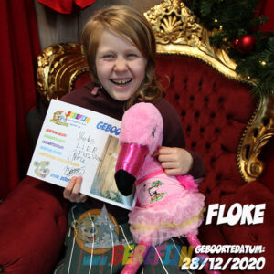 Berefijn knuffeldier Flo – teddybeer - Teddy Mountain - Lier - flamingo - build a bear