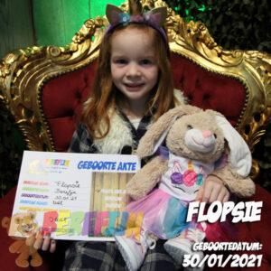 Berefijn knuffeldier Flopsie – build a bear - teddybeer - Teddy Mountain - Lier - konijn - eenhoorn - unicorn - sneaker