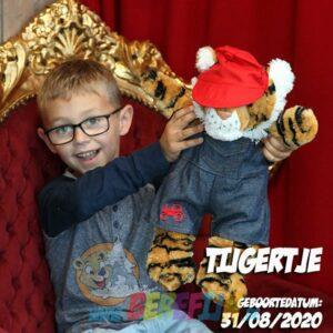 Berefijn knuffeldier Bennie – build a bear - teddybeer - Teddy Mountain - tijger - Lier - pet - broek - boerderij - kleding