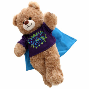 Berefijn - Teddy Mountain - Lier - kleding - t-shirt - blouse - birthday girl - happy birthday - superheld - cape
