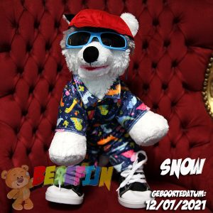 Berefijn knuffeldier Snow – build a bear - teddybeer - Teddy Mountain - Lier - husky - hond - zonnebril - pet - pyjama - dino