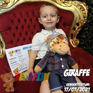 Berefijn knuffeldier Gee-Raffa – teddybeer - Lier - build a bear - cuddles & friends - knuffelbeer - giraf - skater - hoodie