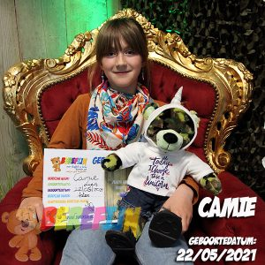 Berefijn knuffeldier Camou – teddybeer - Teddy Mountain - Lier - build a bear - Cuddles & Friends - leger - zelf knuffel maken