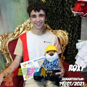 Berefijn knuffeldier Foxy – teddybeer - Lier - build a bear workshop - Cuddles - zelf knuffel maken - vos - knuffelbeer